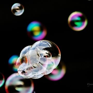 Bubbles by Photograph2u