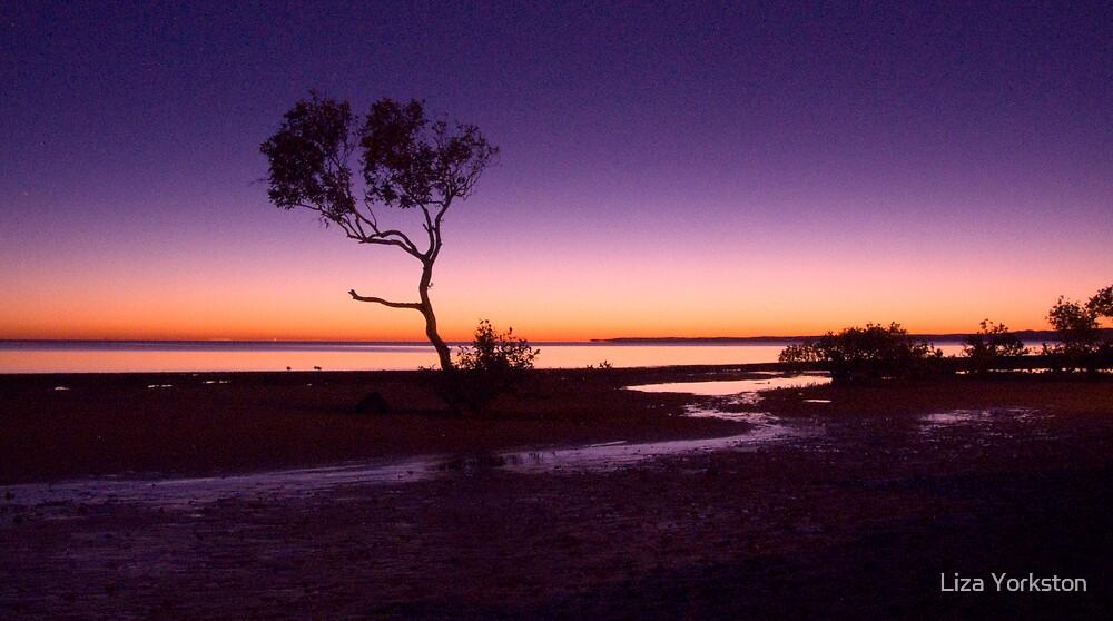 Wellington point sunrise by Liza Yorkston