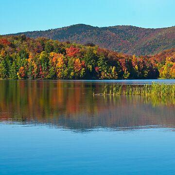 Kent Pond in Autumn by srwdesign