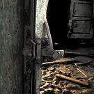 Wagon Door by Stephen Peters