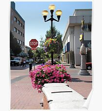 Beautiful Downtown Eugene, Oregon Poster