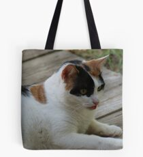 Take my picture-See If I Care! Tote Bag