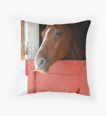 Stable time Throw Pillow