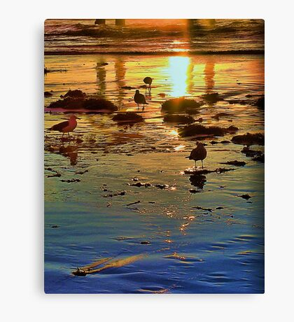 Beach Rainbow Canvas Print
