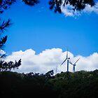 Te Apiti Wind Farm @ Manawatu Gorge by Yukondick