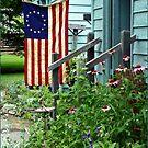 Patriotic Garden by Patrick Czaplewski