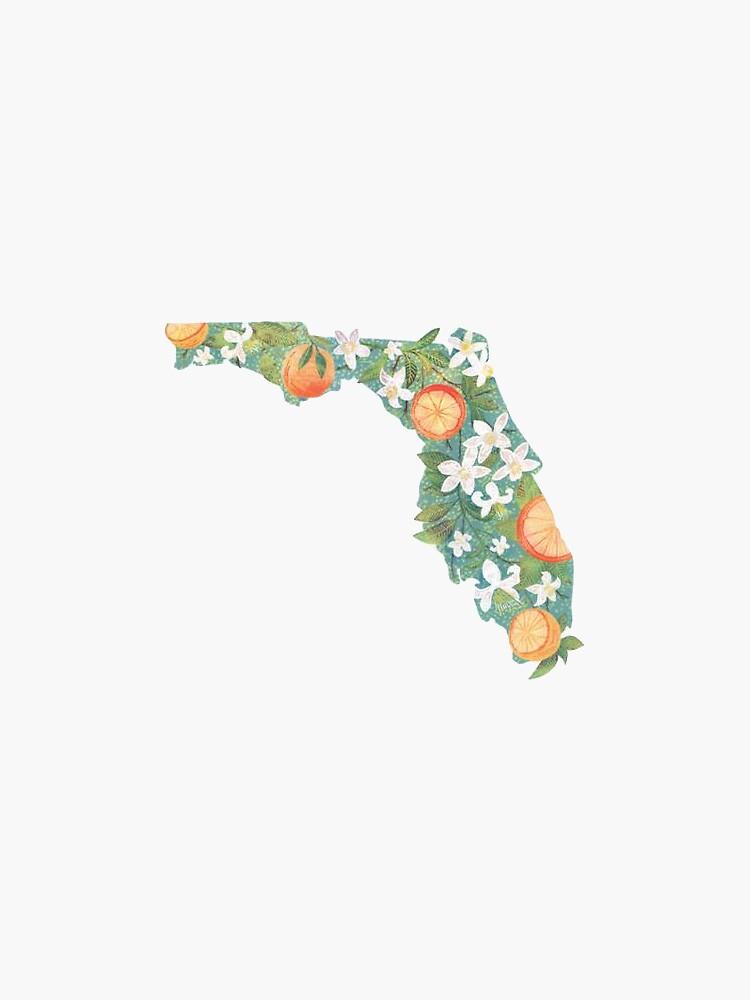 Florida de alexandrapentel