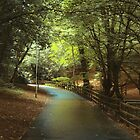 Green shade - path through the trees by Agnes McGuinness
