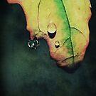drip drop by Angel Warda