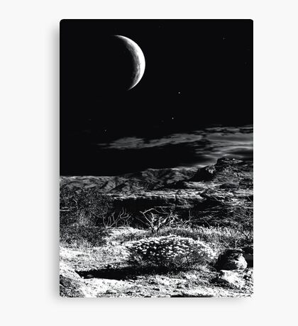 Desert Moon Canvas Print
