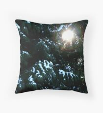 Sun Even In Winter Throw Pillow
