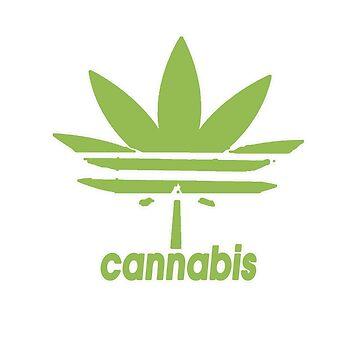 CANNABIS by biomek