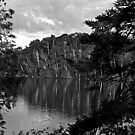 Clear Lake At Dawn by Joanne  Bradley