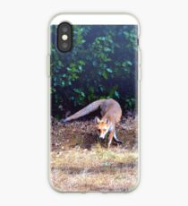 Fox on the hunt iPhone Case