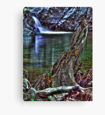 Shan creek swimming hole Canvas Print