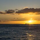 Honolulu Crowded Sunset Cruise by Georgia Mizuleva