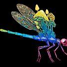 Watch Your Back | Rainbow Dragonfly Painting on Black Background by Stephanie KILGAST