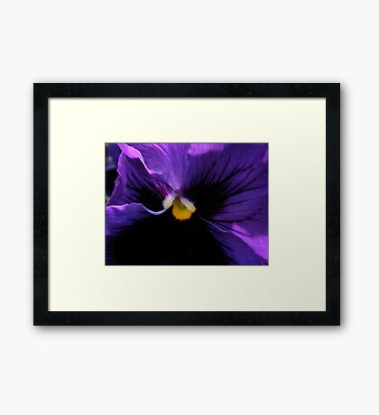 Pansy - Georgia O'Keefe Style (20,000+ Views) Framed Print