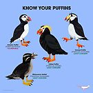 Know Your Puffins by PepomintNarwhal