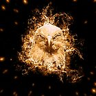 Flaming Eagle by rcurtiss000