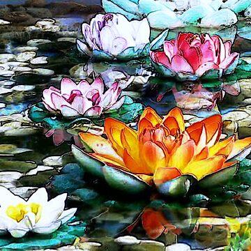 Water lillies by Hristova