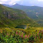 The Dasdana lake by annalisa bianchetti