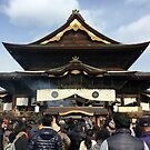 Zenko-ji, January 2015 : Photo Friday at meauxtaku.com by merimeaux