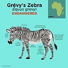 Grévy's Zebra by PepomintNarwhal
