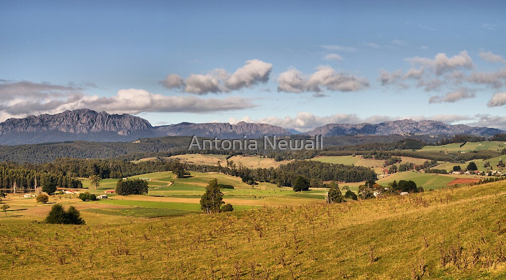 Mt Roland in Tasmania by Antonia Newall