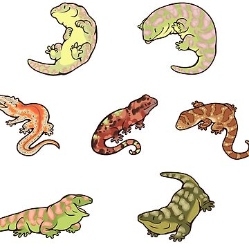 Gecko sticker batch the third de Colordrilos