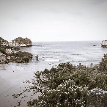 Stark Ocean by DVJPhotography