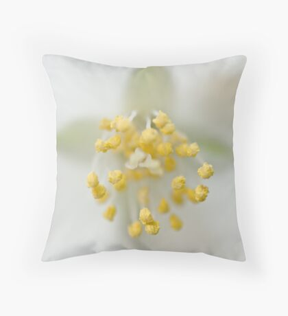 Philadelphus Throw Pillow