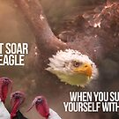 YOU CAN'T SOAR LIKE AN EAGLE... by fearlessmotivat