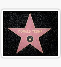 Donald Trump - Star Sticker