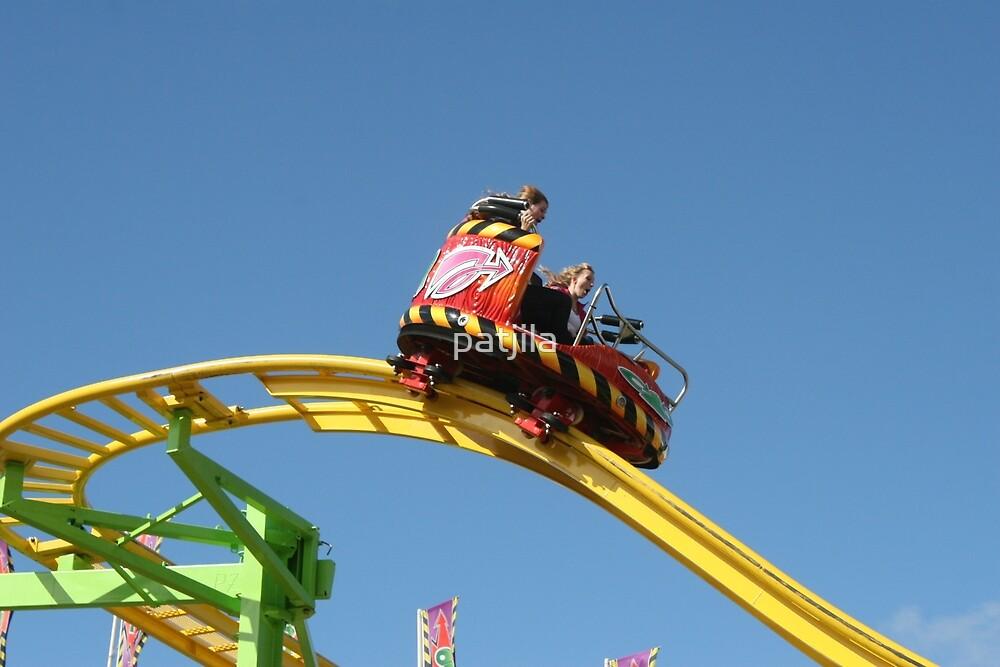 Screamin' Thrill Ride  by patjila