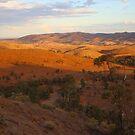 Sunset, Bendleby Ranges, Australia by FranWest