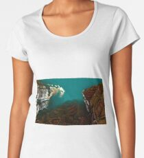 Arid canyon fractal landscape Women's Premium T-Shirt