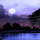 Serenity ..... by AroonKalandy