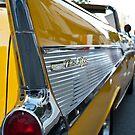 A Fine Yellow Fin by Greg Schroeder
