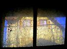 Basement Window  by Mojca Savicki