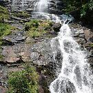 Amicalola Falls  by Adria Bryant