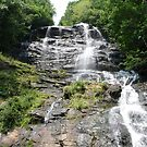 amicalola falls 1st 175 steps by abryant