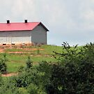 farm house on the hill of the orchard by Adria Bryant