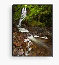 Tom Ghyll waterfall Canvas Print