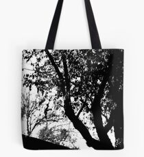 Co2 Tote Bag