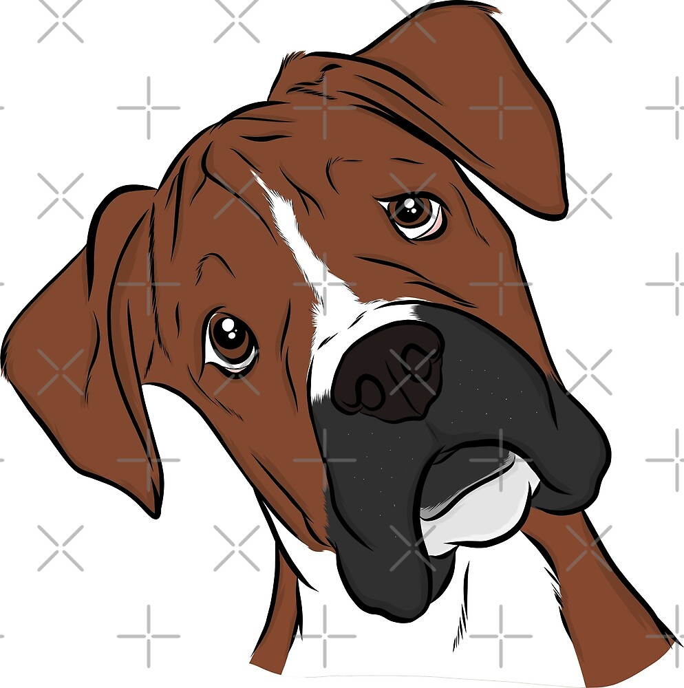 Adorable Boxer  by rmcbuckeye
