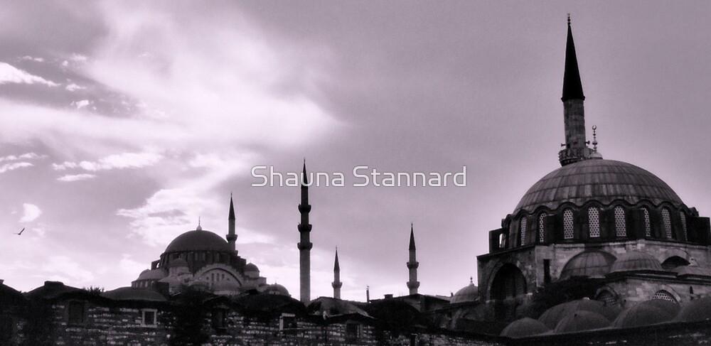 istanbul by Shauna Stannard