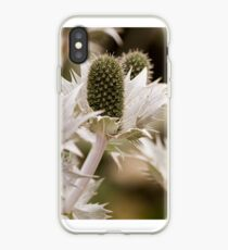 Bleached teasel iPhone Case