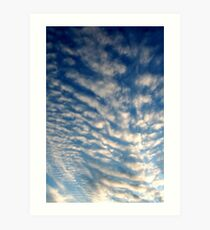 Spiny Clouds Art Print