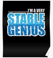 Stable Genius Poster